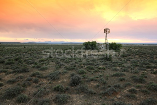Water Pump Windmill on Arid Farmland Stock photo © fouroaks