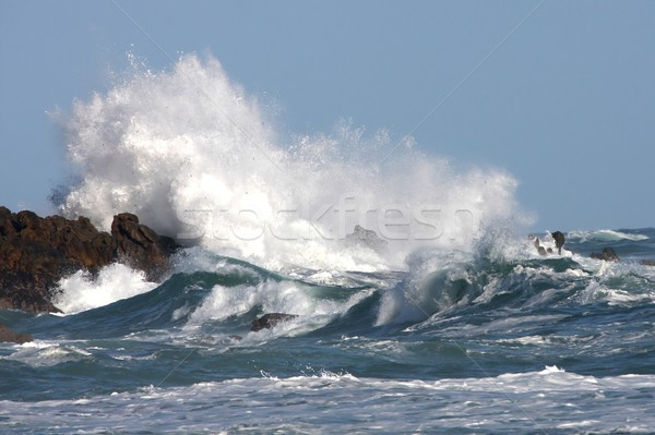 Stormy Sea and Waves Stock photo © fouroaks