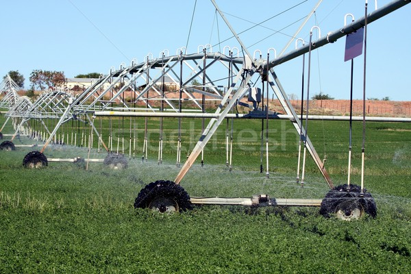 Farm Sprinkler System Stock photo © fouroaks
