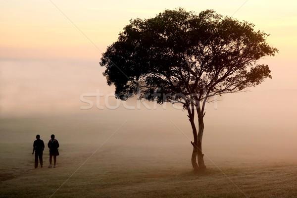 Misty mattina piedi due persone piedi passato Foto d'archivio © fouroaks