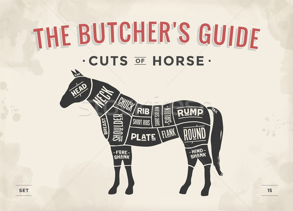 Cut of meat set. Poster Butcher diagram, scheme - Horse Stock photo © FoxysGraphic