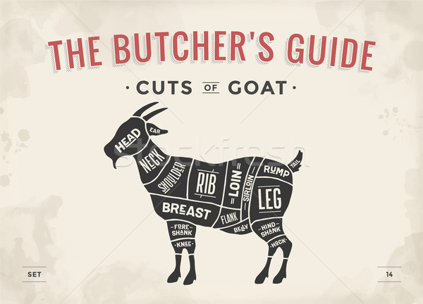 Cut of meat set. Poster Butcher diagram, scheme - Goat Stock photo © FoxysGraphic