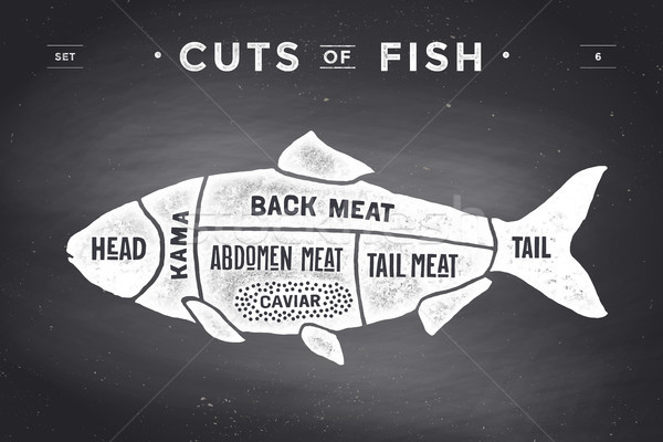 Cut of meat set. Poster Butcher diagram and scheme - Fish Stock photo © FoxysGraphic