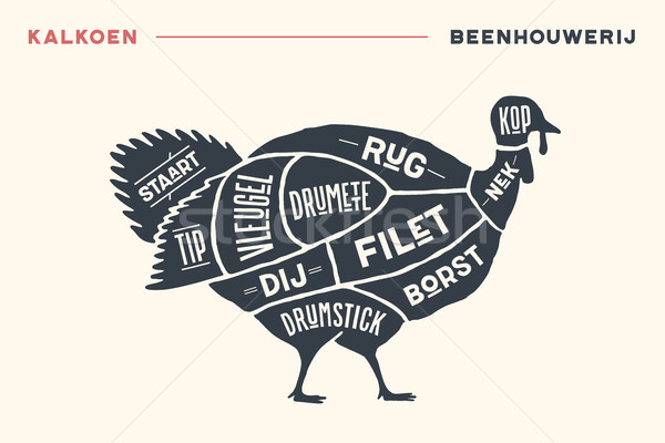 Meat cuts. Poster Butcher diagram and scheme - Turkey Stock photo © FoxysGraphic
