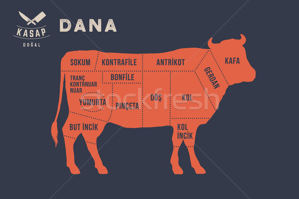 Meat cuts. Poster Butcher diagram - Dana Stock photo © FoxysGraphic