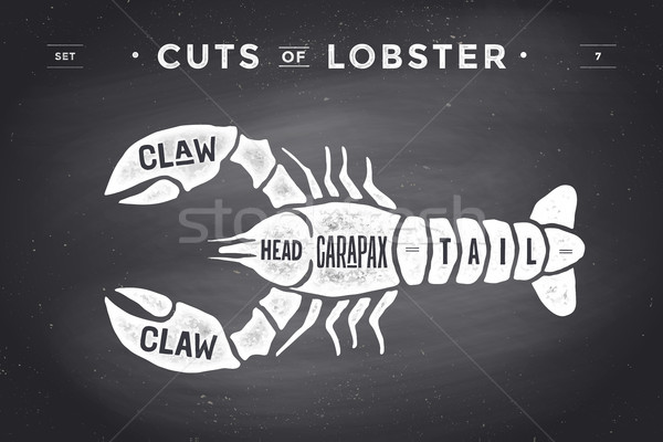 Cut of meat set. Poster Butcher diagram and scheme - Lobster Stock photo © FoxysGraphic