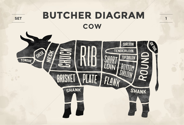 Cut of meat set. Poster Butcher diagram and scheme - Cow. Vintage typographic hand-drawn. Vector ill Stock photo © FoxysGraphic