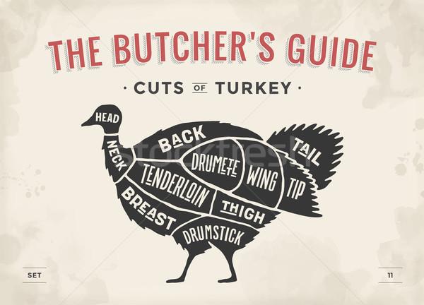 Cut of meat set. Poster Butcher diagram, scheme - Turkey Stock photo © FoxysGraphic