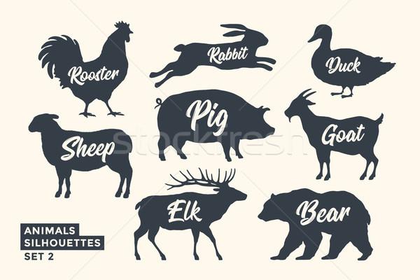 Animals silhouette set. Black-white silhouette of animals Stock photo © FoxysGraphic