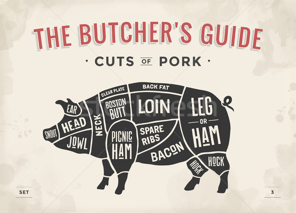 Cut of meat set. Poster Butcher diagram, scheme and guide - Pork. Vintage typographic hand-drawn. Ve Stock photo © FoxysGraphic