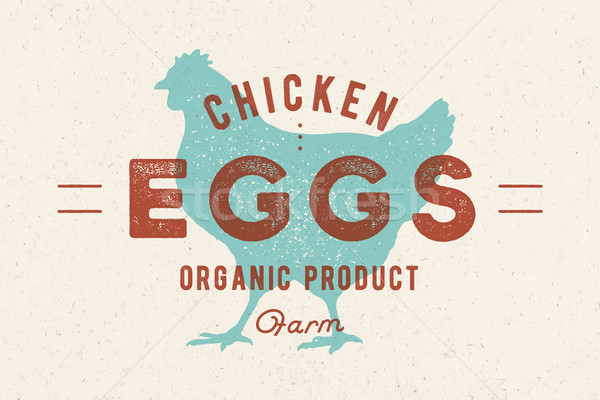 Chicken Eggs. Vintage hand drawn logo Stock photo © FoxysGraphic