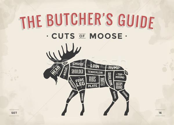 Butcher diagram, scheme - Moose Stock photo © FoxysGraphic