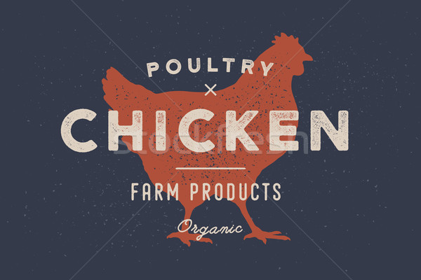 Chicken, poultry. Poster for Butchery meat shop Stock photo © FoxysGraphic