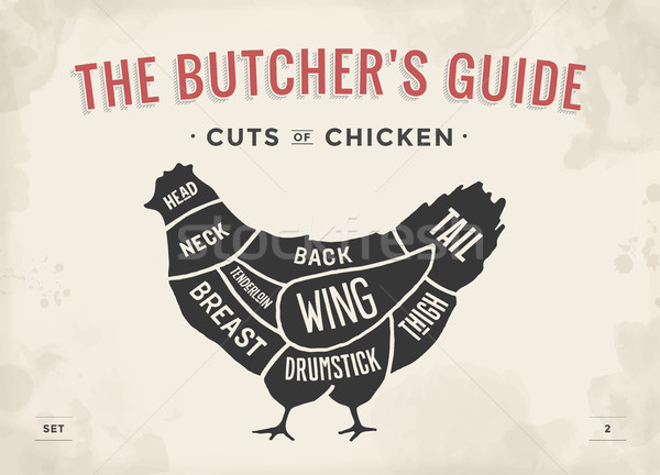 Cut of meat set. Poster Butcher diagram and scheme - Chicken. Vintage typographic hand-drawn. Vector Stock photo © FoxysGraphic