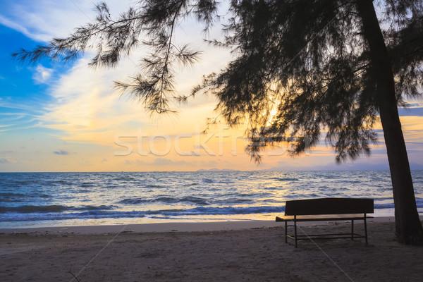 Beach Chairs under tree on beach at sunset Stock photo © FrameAngel