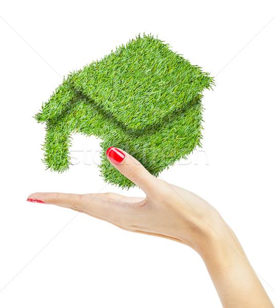 теплица стороны домой зеленый Финансы архитектура Сток-фото © FrameAngel