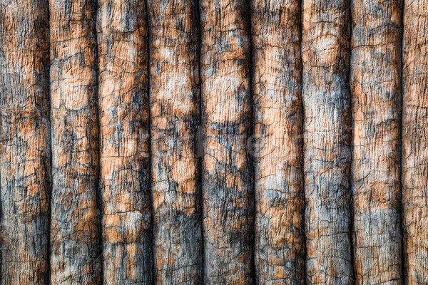 timber or wooden planks wall, pattern texture as background Stock photo © FrameAngel