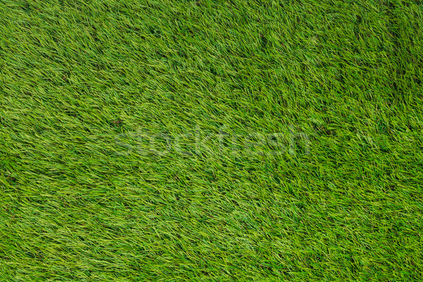 Photo stock: Artificielle · gazon · herbe · verte · texture · herbe · football