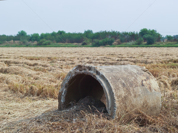 Defective cement pipe on the field. Stock photo © FrameAngel