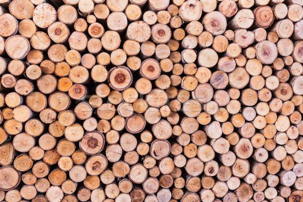 Madeira textura árvore floresta fundo vida Foto stock © FrameAngel