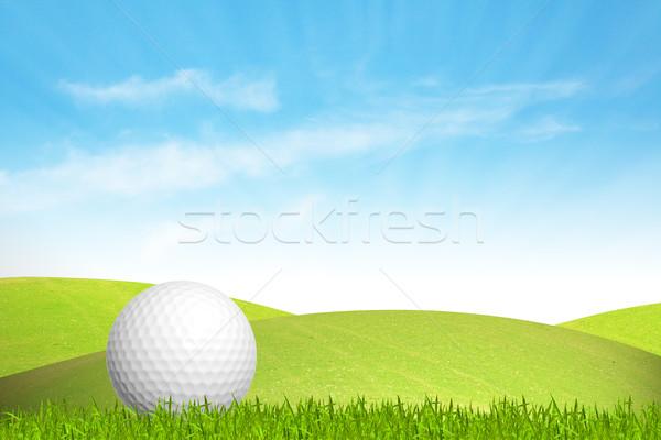 мяч для гольфа зеленая трава небе текстуры гольф мяча Сток-фото © FrameAngel