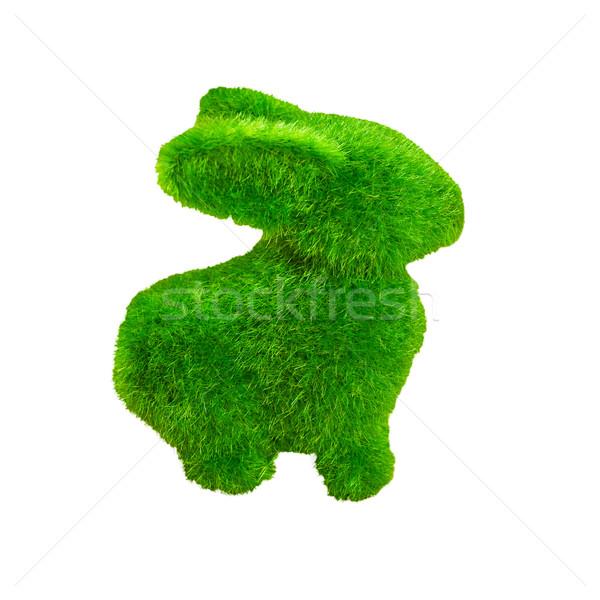 Peu vert lapin herbe artificielle isolé Photo stock © FrameAngel