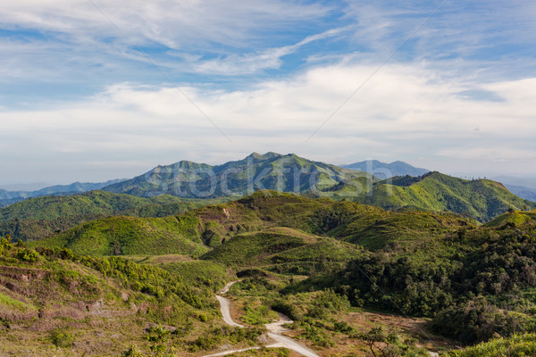 mountains under mist in the morning at Nern Chang Suek, Thong Ph Stock photo © FrameAngel