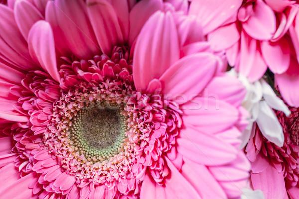 Köteg virágpor virágok közelkép szeretet rózsa Stock fotó © FrameAngel