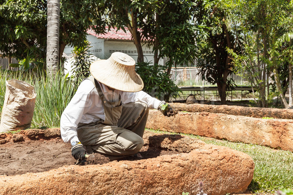 farmer wearing hat and white shirt is preparing soil for agricul Stock photo © FrameAngel