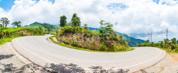 Curva asfalto carretera vista panorama árbol Foto stock © FrameAngel