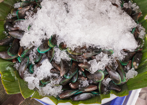 Fresh Mussels with ice Stock photo © FrameAngel