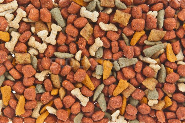 Dog food background  Stock photo © FrameAngel