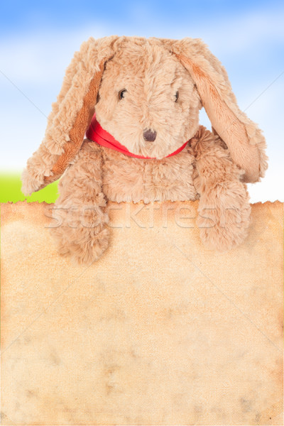 Rabbit, holding old grunge canvas fabric burn edge for happy eas Stock photo © FrameAngel