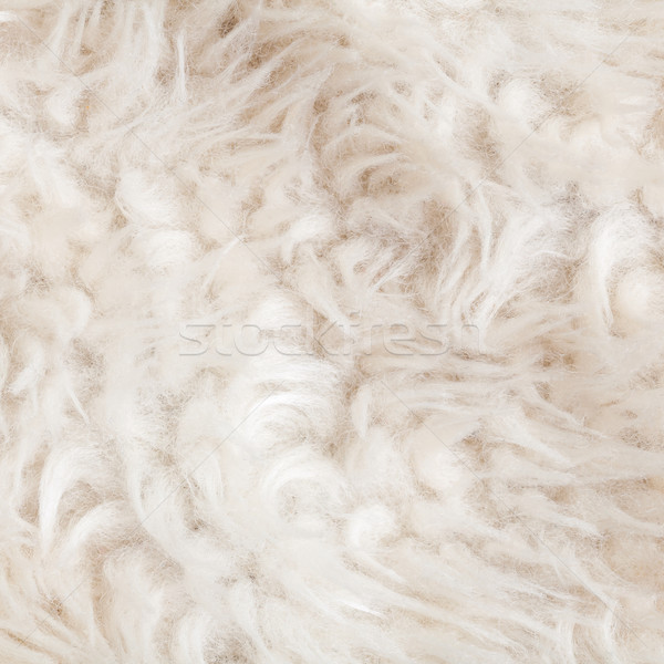 Wool texture or fur, can use as pattern background Stock photo © FrameAngel