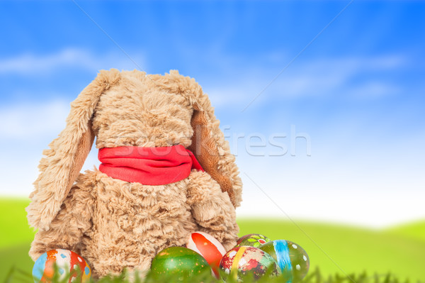 Rabbit, sit on green grass and group of colorful eggs are behind Stock photo © FrameAngel