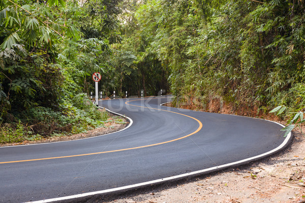 'S' curved asphalt road view in the forest Stock photo © FrameAngel