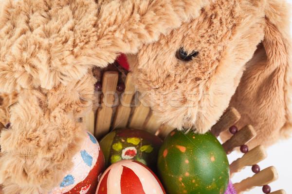кролик ухода красочный пасхальных яиц Сток-фото © FrameAngel