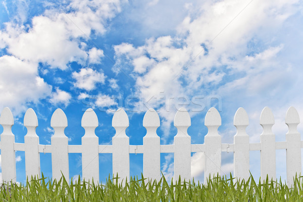 White fence and grass with blue sky background Stock photo © FrameAngel