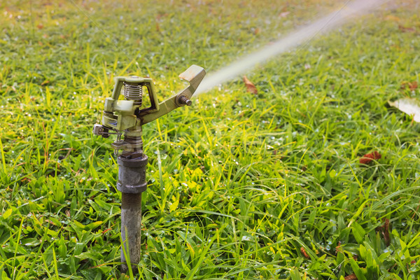 sprinkler head watering the flowers and grass Stock photo © FrameAngel