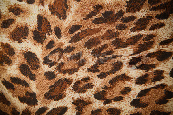 Foto d'archivio: Leopard · Jaguar · pattern · abstract · nero · pelle