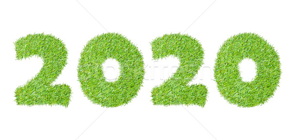 2020, New year made from the green grass, isolated on white can  Stock photo © FrameAngel