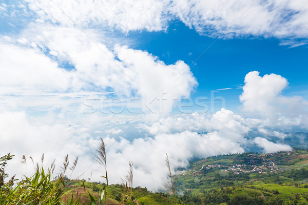 Montanhas ver névoa manhã banheira céu Foto stock © FrameAngel