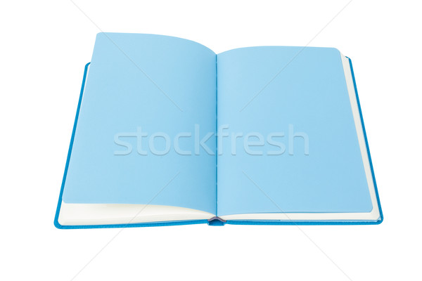Open Book blue page on white background Stock photo © FrameAngel