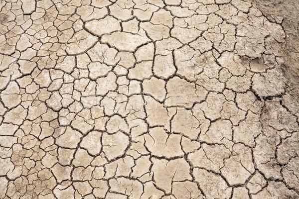 土壌 テクスチャ 亀裂 ファーム 農業 新鮮な ストックフォト © FrameAngel
