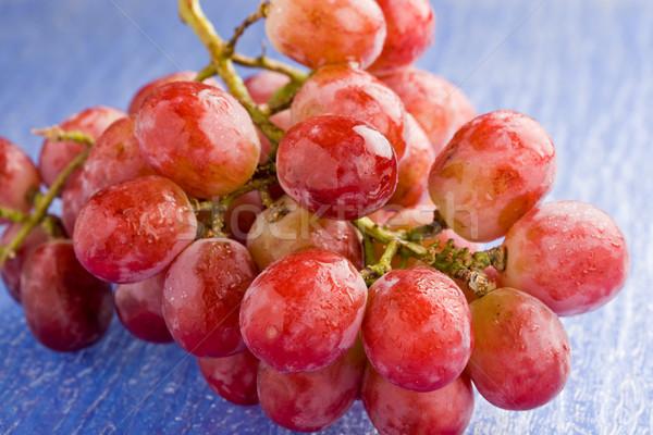 виноград фото красный винограда синий Сток-фото © Francesco83