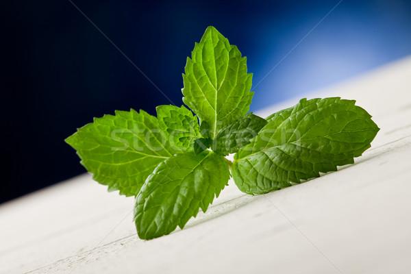 Mint bladeren houten tafel plek licht foto Stockfoto © Francesco83