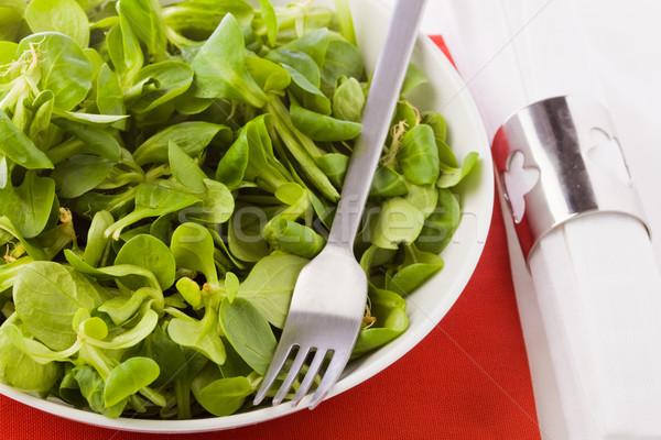 Salad Stock photo © Francesco83