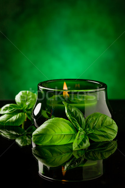 Candle with basil flavour Stock photo © Francesco83