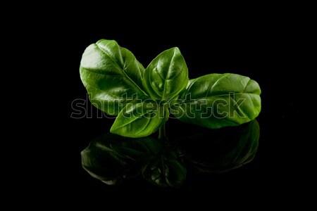 Fesleğen yaprakları siyah fotoğraf lezzetli taze Stok fotoğraf © Francesco83