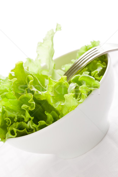 Lettuce Stock photo © Francesco83